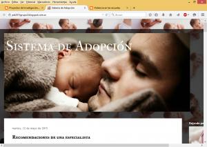 Personalización del blog sobre adopción