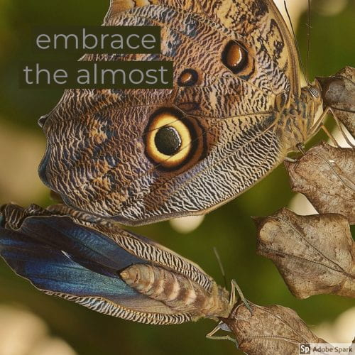 embrace the almost