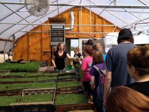 Fledgling Crow Farm Visit day Tour w Brit