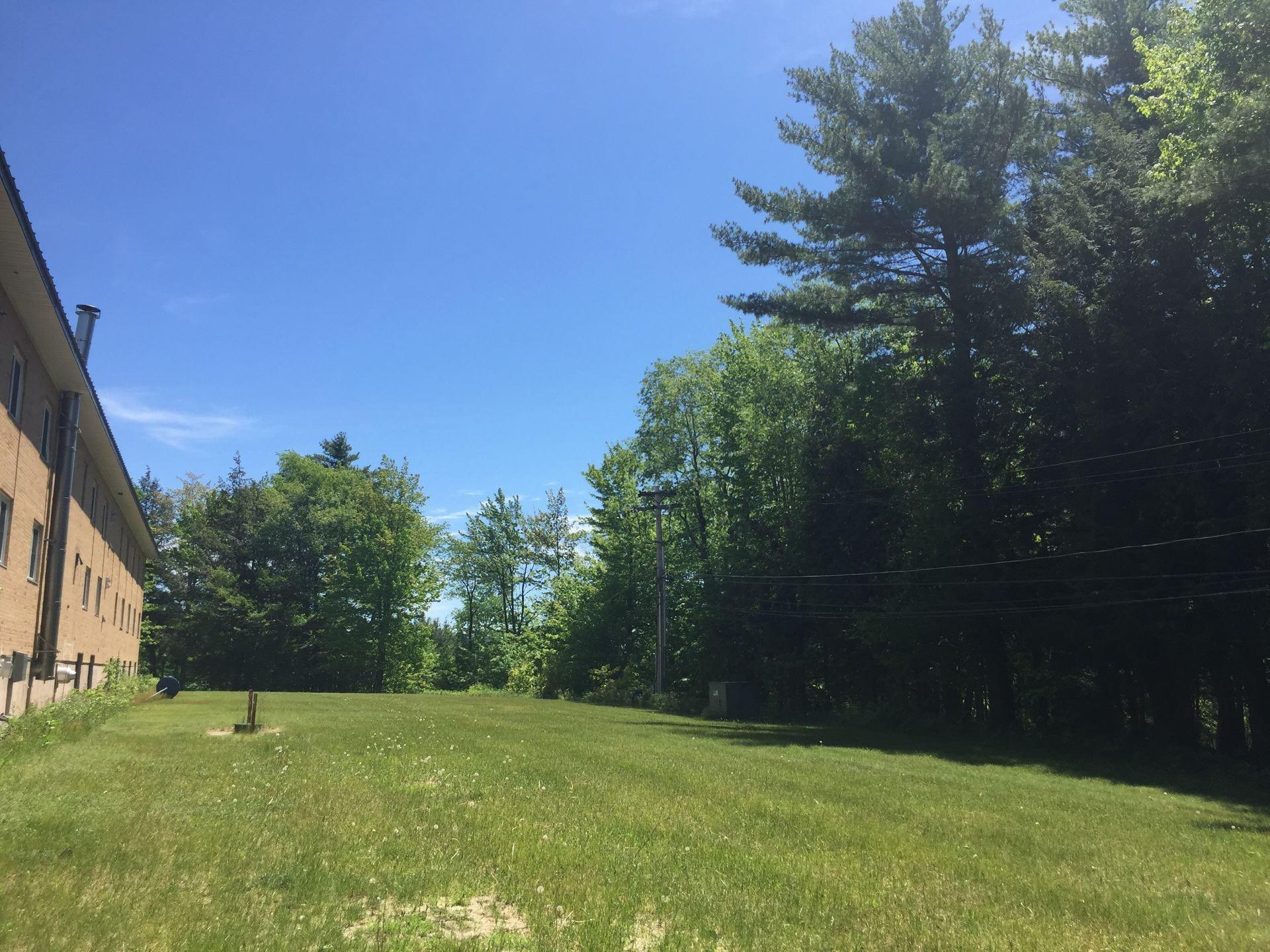 Saratoga Backyard Space