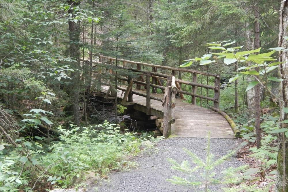 Handsome Pond Trail