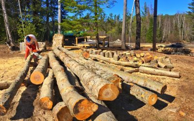 "Paul Smith's College prepares for ""Super Bowl"" of collegiate timbersports"