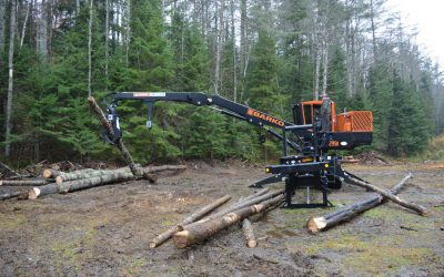 Paul Smith's College launches logger-training program