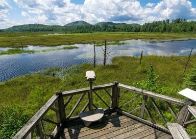 Heron Marsh Trail