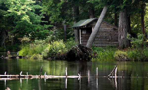 Long Pond Lean-to