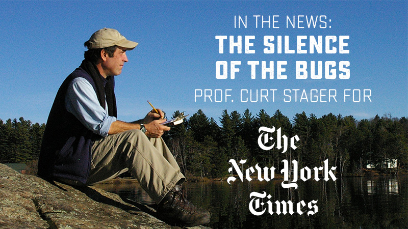 In the news: The Silence of the Bugs. Prof. Curt Stager for The New York Times.