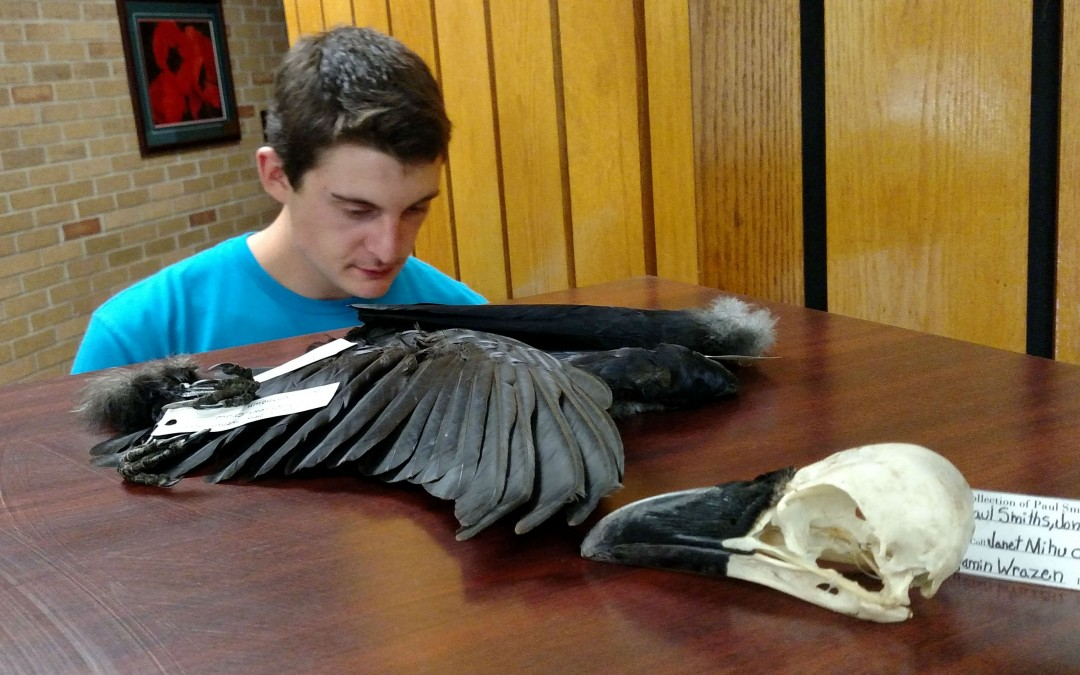 Honoring Life, One Death at a Time: Profile of Sophomore Ben Wrazen