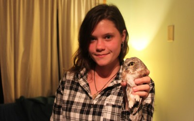 The Saw Whet Owl Banding Station finishes 5th Season