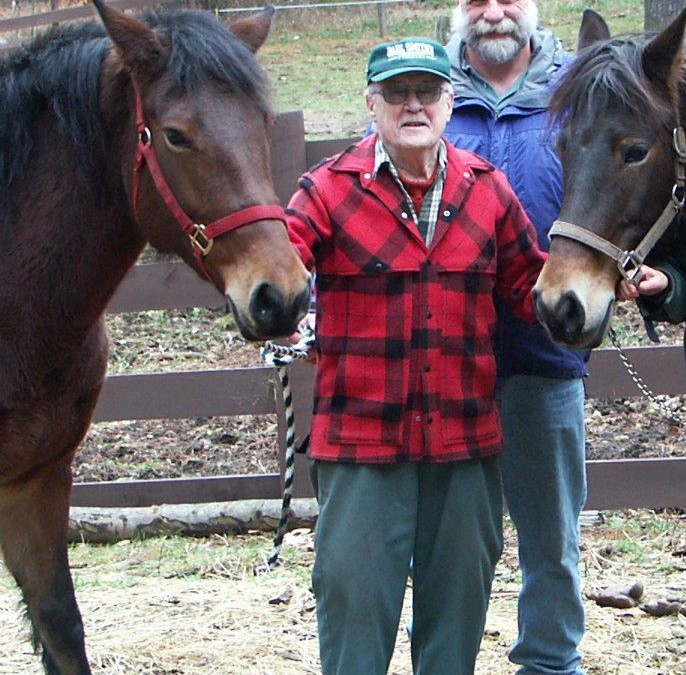 Draft Horses at PSC: Insight from Bob Brhel