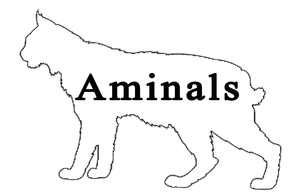 Aminals Nepal | Part 2