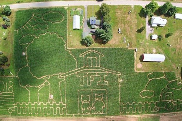 Lost: The Great Adirondack Corn Maze