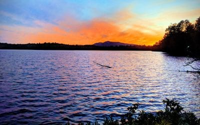 Untainted, An Adirondack Love