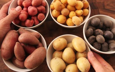 Three Potato Haikus
