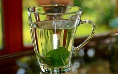 A Green Tea Party to Celebrate TRiO Day