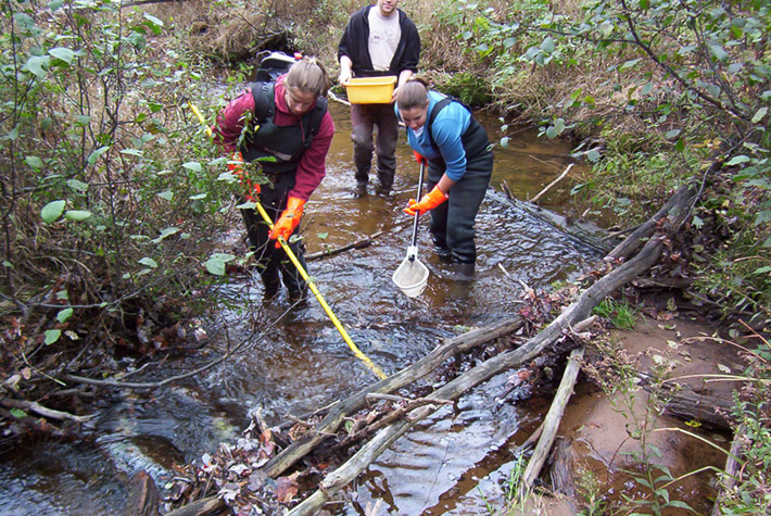 Students doing research in a stream
